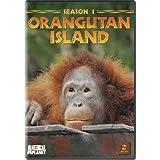 Orangutan Island - Season 1 ~ Orangutan Island
