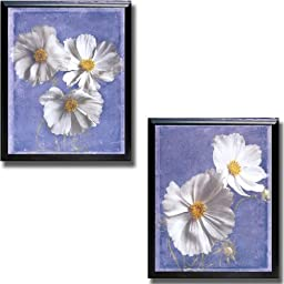 Cosmos on Blue by Amy Melious 2-pc Black-Satin Framed Canvas Set (Ready-to-Hang)
