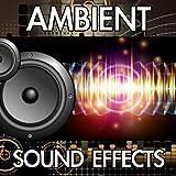 Fireplace Flames Fluttering (Wood Burning Flame Flutter Fire Ambience Background Noise Soundscape Clip) [Sound Effect]