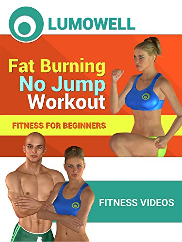 Fat Burning No Jump Workout