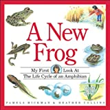 img - for A New Frog (My First Look at) book / textbook / text book