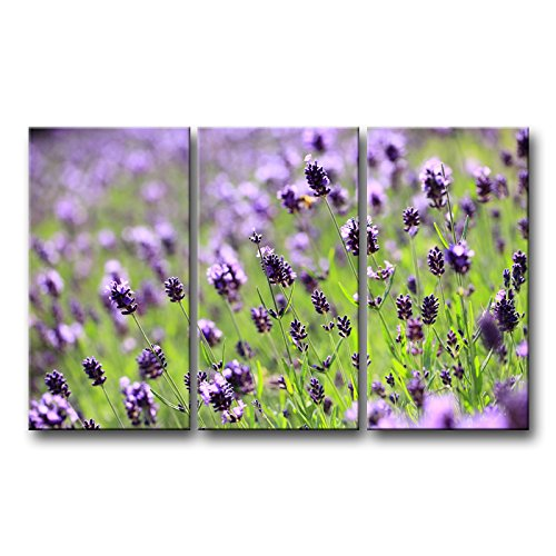 So Crazy Art 3 Piece Green Wall Art Painting Lilac