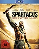 Spartacus: Gods of the Arena - Die komplette Season [Blu-ray]