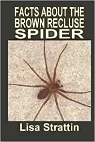 Facts About the Brown Recluse Spider (Facts For Kids ... - photo#22
