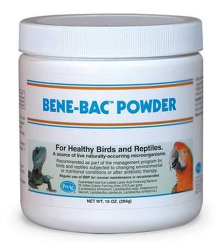 Bene-Bac Bird & Reptile Powder, 10oz