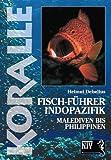 Koralle - Fisch-Führer Indopazifik: Malediven bis Philippinen