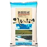 新潟県産 白米 こしいぶき 5kg 平成28年産