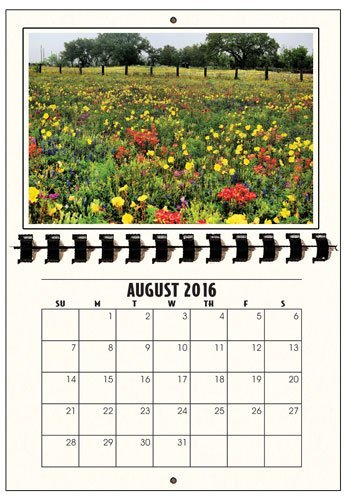 Photographer's Edge, 2017 Photo Mount Wall Calendars, for Horizontal 4x6 Photos, Pack of 3 (Personal Photo Calendar compare prices)