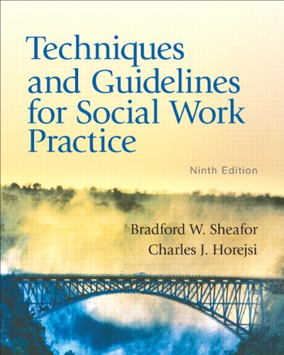 Techniques and Guidelines for Social Work Practice (9th...