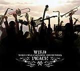 WILD PEACE(DVD付)