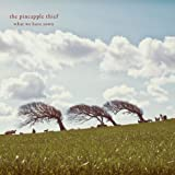 What We Have Sown by Pineapple Thief (2013-02-12)
