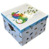 The World of Eric Carle, Mister Seahorse Large 36cm x 36cm x 23.5cm Collapsible Storage Box