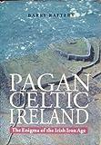 Pagan Celtic Ireland: The Enigma of the Irish Iron Age