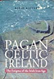 Pagan Celtic Ireland: The Enigma of the Irish Iron Age