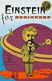 Einstein for Beginners (0679725105) by McGuinness, Michael