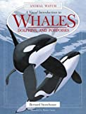 img - for A Visual Introduction to Whales, Dolphins, and Porpoises (Animal Watch) book / textbook / text book