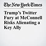 Trump's Twitter Fury at McConnell Risks Alienating a Key Ally | Carl Hulse