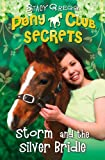 img - for Storm and the Silver Bridle (Pony Club Secrets, Book 6) book / textbook / text book