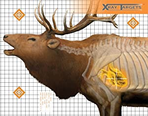 Champion Elk 36x30-Inch Xray Paper Target (Pack of 6)