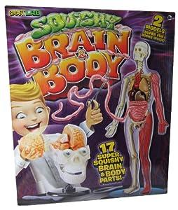 Squishy Brains Toys : Amazon.com: Smart Lab Squishy Brain & Body: Toys & Games
