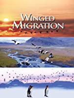 Winged Migration [HD]