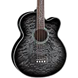 Michael Kelly MKDF4SKB 4-String Dragonfly Acoustic Bass, Guitar, Smoke Burst