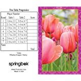 Tulips Bridge Tallies (12 Pack) - 2 And 3 Table Progressive