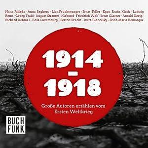 1914-1918: Große Autoren erzählen vom Ersten Weltkrieg Hörbuch