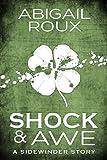 Shock & Awe (Sidewinder Book 1) (English Edition)