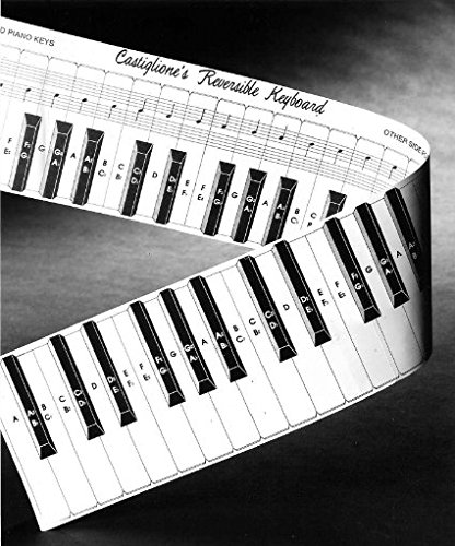 Find Cheap Practice Keyboard & Note Chart for Behind the Piano Keys