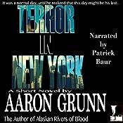 Terror in New York Audiobook