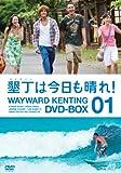 墾丁(ケンティン)は今日も晴れ!DVD-BOX1