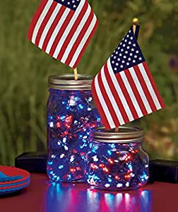 Patriotic String Lights Outdoor : Amazon.com : 100 LED String Solar Powered Patriotic Outdoor Yard Garden Lights Decor : Patio ...