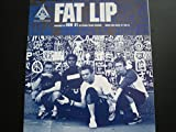 img - for Fat Lip / Guitar Tab Vocal / Sum 41 book / textbook / text book