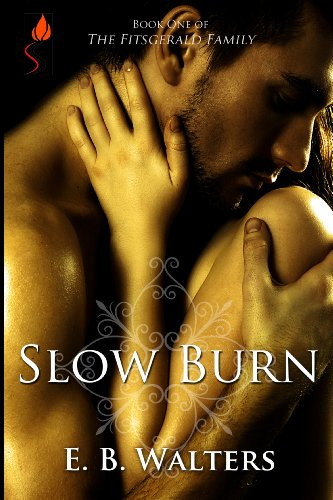 Slow Burn (The Fitzgerald Family series)