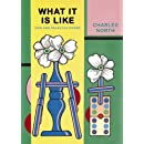 What It Is Like: New and Selected Poems