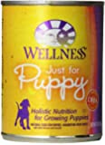 Wellness Complete Health Natural Wet Canned Dog Food, Just for Puppy Chicken & Salmon Recipe, 12.5-Ounce Can (Pack of 12)
