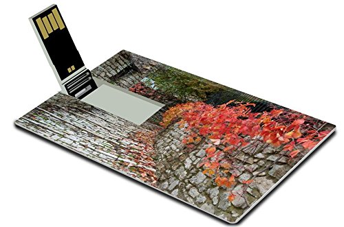 luxlady-8gb-usb-flash-drive-20-memory-stick-credit-card-size-road-with-red-leaves-in-a-traditional-v