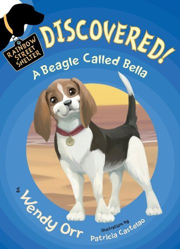 discovered-a-beagle-called-bella-rainbow-street-shelter-quality