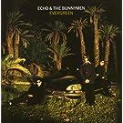 Evergreen [UK Bonus Tracks]