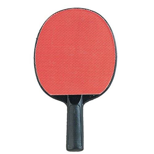 Champion Sports PN4 Table Tennis Paddle (4 Star Ping Pong Balls Champion compare prices)