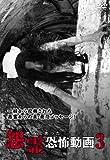 本当にあった怨霊恐怖動画 3 [DVD]