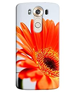 Back Cover for LG V10 By FurnishFantasy