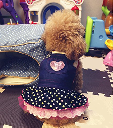 kailian-r-cowboy-robe-joli-chien-doggie-cute-puppy-automne-hiver-vetements-interieur-chien-denim-jup