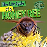 img - for The Life Cycle of a Honeybee (Nature's Life Cycles) book / textbook / text book