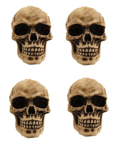 3D Natural Skull Heads Car Truck SUV Motorcycle Bike Tire Valve Caps - 4PC