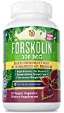 Pure Coleus Forskohlii Extract Powder Capsule - With 40% Standardized Pure Coleus Forskohlii Extract Weight Loss Supplement - Forskolin Extract Diet Pills that Work for Women and Men - Powerful All Natural Appetite Suppressant - 90 NON GMO Vegetarian Safe Capsules by NutriGood Labs