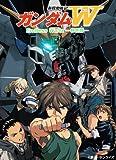 新機動戦士ガンダムW Endless Waltz 特別篇 [DVD]