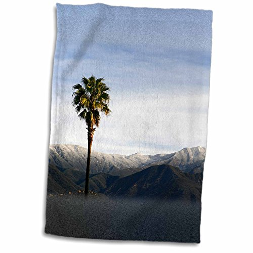 3dRose Henrik Lehnerer Designs - Nature - Ojai valley with snowy mountains and a palm tree in the foreground. - 12x18 Towel (twl_211631_1) (Ojai Hotels compare prices)