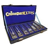 Set de 7 armónicas Kay Guitar  Chicago Blues de 7 notas Mayores, color plata. KHCB-7A